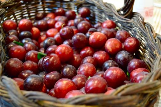 Frutta Podere Stuard