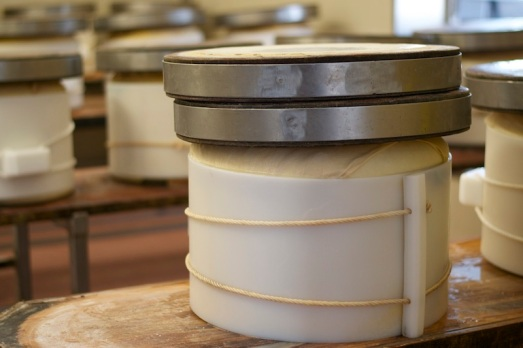 Forma di Parmigiano